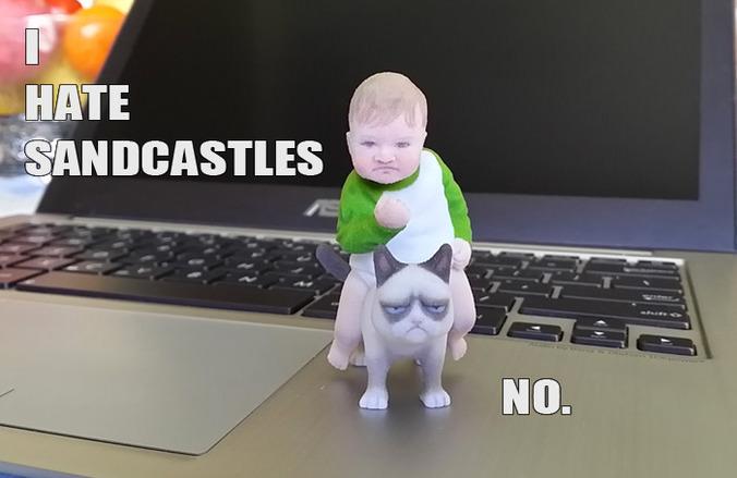 Success Kid On Grumpy Cat 3d Print Meme 3d Model 3d