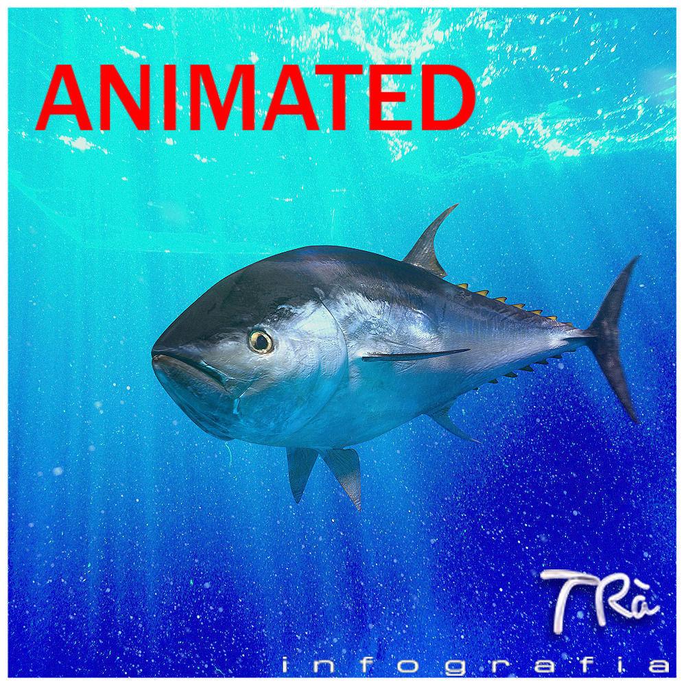 Tuna bluefin 3d model animated max for Blue fin fish