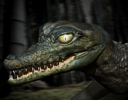 Grid_birth_of_a_crocodile_3d_model_ma_mb_obj_d248a363-f0d7-4da0-bc79-fbec73e2fe9b