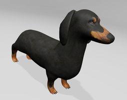 Teckel 3D Model