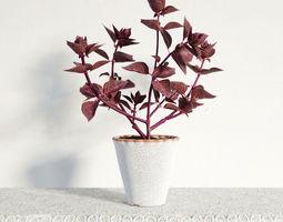 3D model plant 34 am141