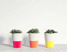 3D model plant 29 am141