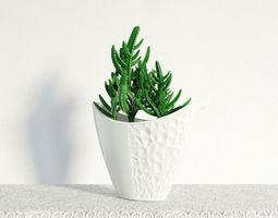 3D plant 23 am141