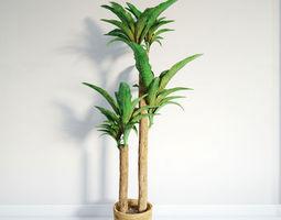 3D model plant 11 am141