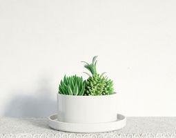3D model plant 14 am141