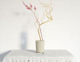 plant 06 am141 3D model