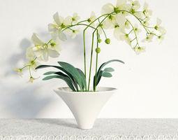 3D plant 05 am141