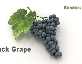 Black Grape 3D
