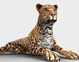 leopard 3d model animated