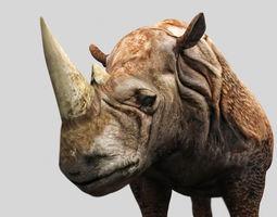 animated Rhino 3D Mode