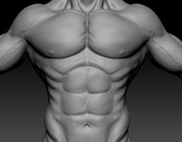 3d male muscle character VR / AR ready