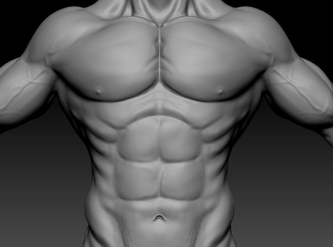 3d male muscle character 3d model low-poly ztl 1