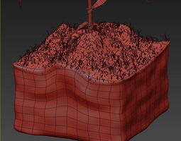 Corn Growth Plant Stages with Ground 3D Model