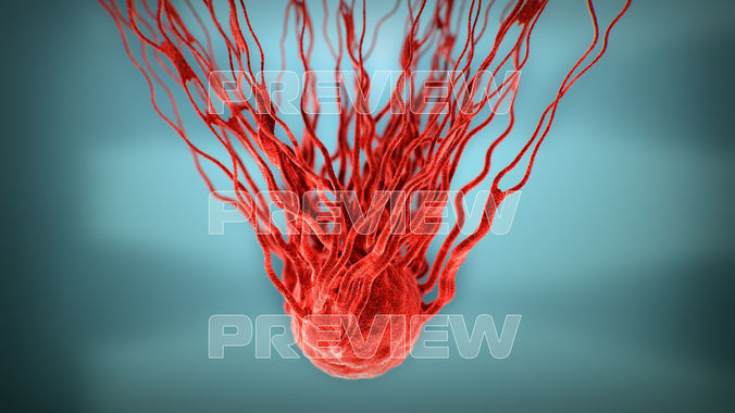 cancer growth 3 static and animated obj sequence 3d model animated max obj mtl 1