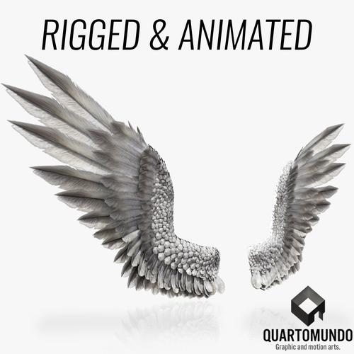 pair of bird wings c4d  3d model low-poly rigged animated obj mtl 3ds fbx c4d 1
