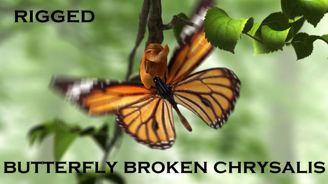 butterfly broken chrysalis 3d model rigged animated max 1