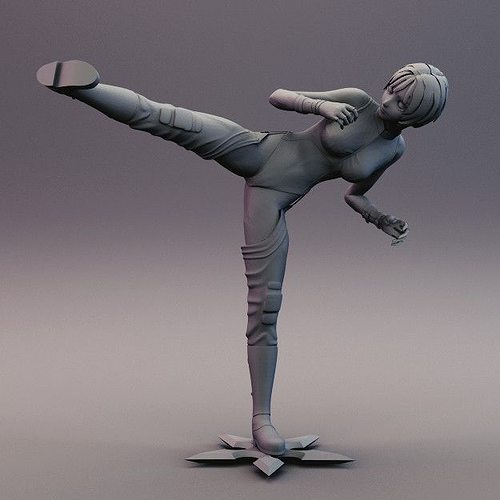 3D print model Sexy Anime Ninja Side Kick Pose | CGTrader