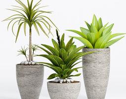 Decorative plant set-7 3D