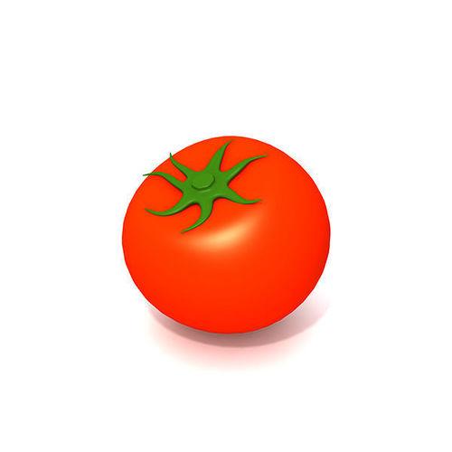 tomato 3d model max obj mtl fbx ma mb 1
