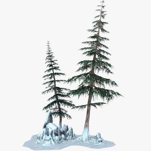 Snow Pine Tree3D model