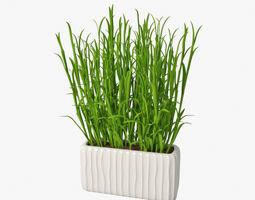 3D grass in pot 03