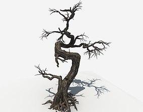 Dry Tree 05 3D