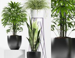 3D model plants set 125