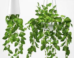 3D Hanging plants 131