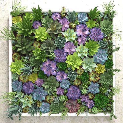 succulents wall 3d model max obj mtl fbx 1