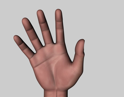 Hand - Fully rigged realistic model 3D Model