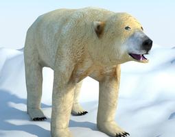 Low Poly Polar Bear 3D asset