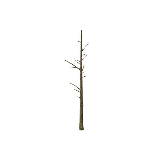Dead tree3D model