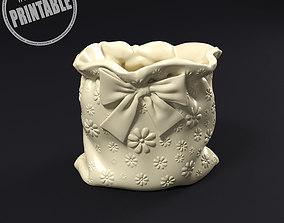 3D print model Pouch plant pot