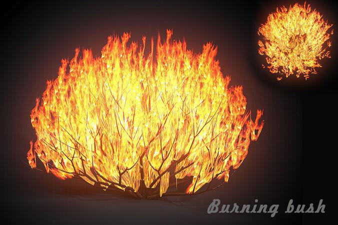 3d Asset Burning Bush Cgtrader