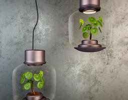 terrarium Plant under the lamp 3D model
