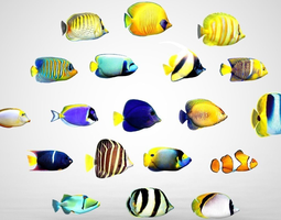 Fish Pack 3D asset low-poly
