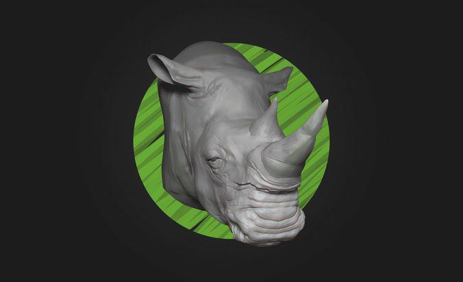 White Rhino Head - High Poly