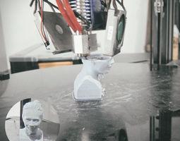 3D printable model portrait