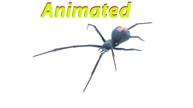 black widow  3d model rigged animated max fbx blend 1