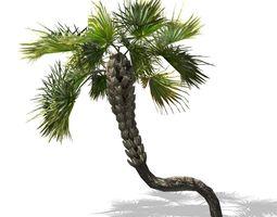 Realistic Palm 3D print model