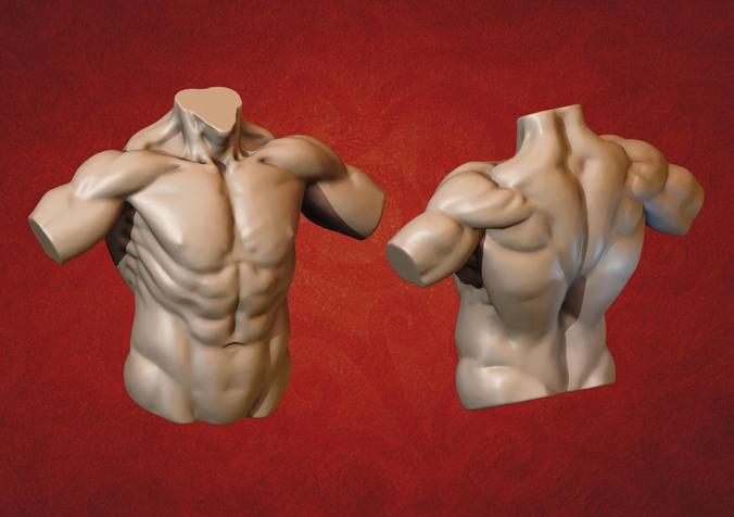 male torso 3d model obj mtl fbx stl blend 1