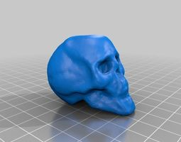 3d print model small skull