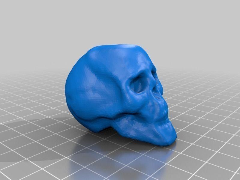 Small Skull 3D print model   CGTrader