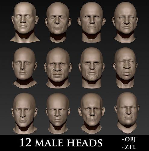 12 male heads 3d model obj ztl 1