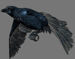 Crow with Animated 3D asset