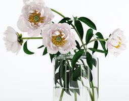 Light pink peones 3D model