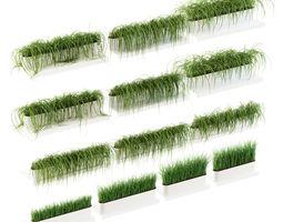 Grass on the shelves of 13 models 3D