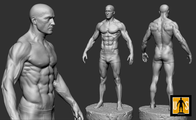 male anatomy study 3d model obj mtl fbx stl ztl 1