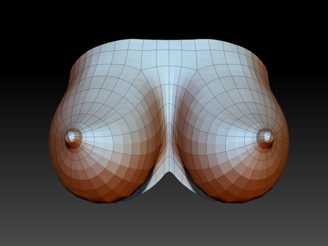 3d models boobs