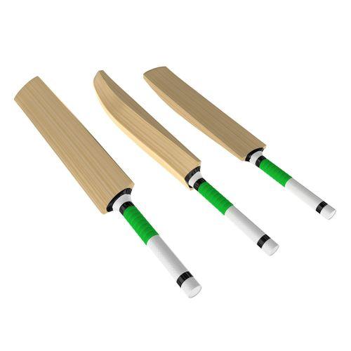 cricket bat 3d model max obj mtl 3ds fbx c4d lwo lw lws 1